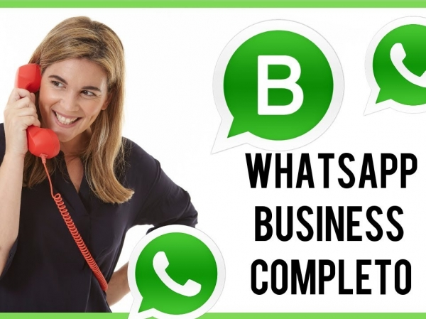 Com funciona Whats app Business